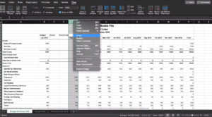 Inserting columns to compare our budget vs actual data in Excel.